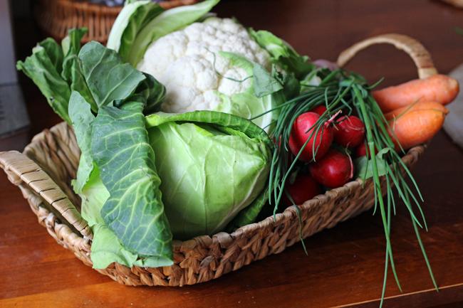 warzywa czy jarzyny?